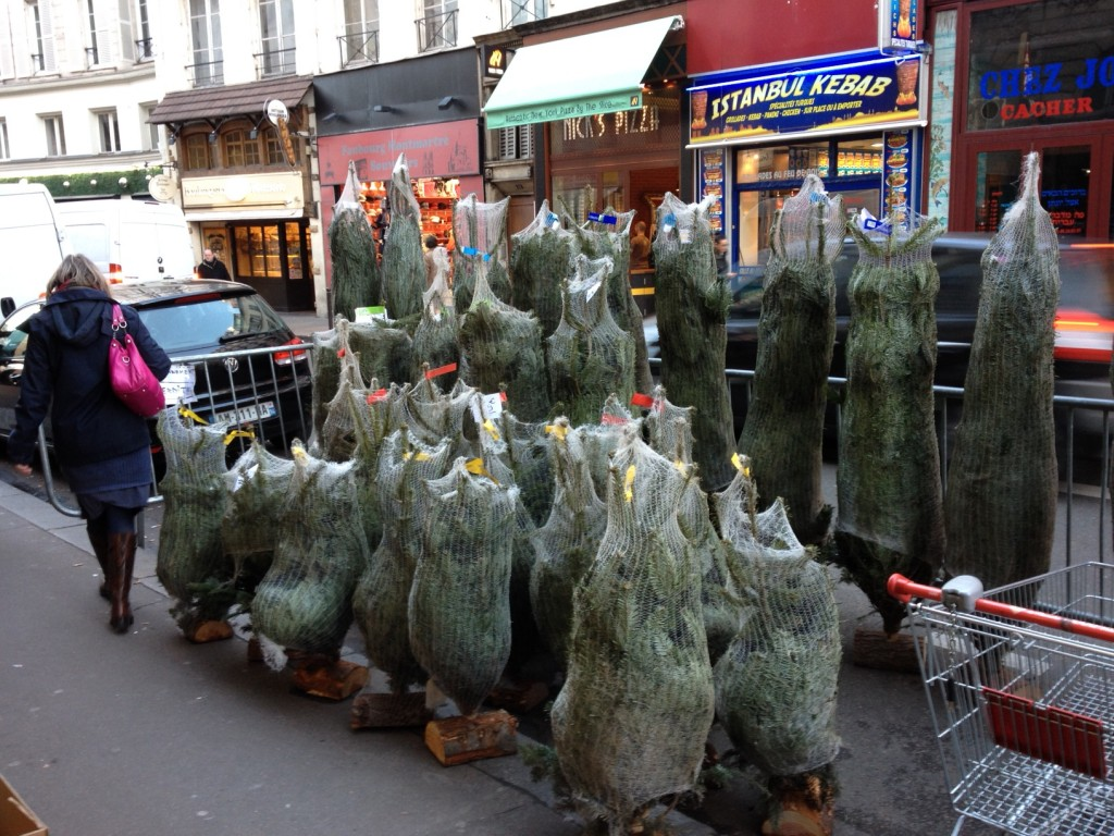 Christmas Trees for Sale...